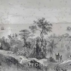 before restoration with foxing on watercolour of jungle scene