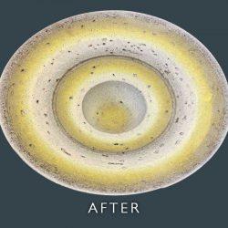 Ceramic Plate Restoration - After