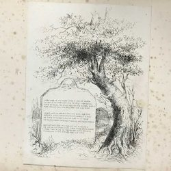 Etching of gravestone damaged by foxing