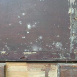 Mould spores on the rear of artwork