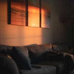 Sunlight on wall of lounge