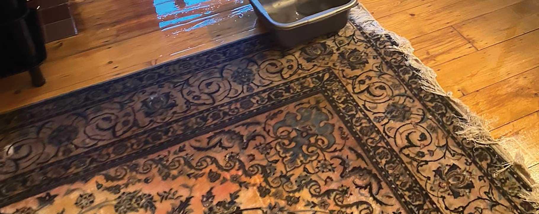 Water Damaged Persian Rug Restoration